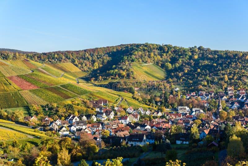 Виноградники на Штутгарте - красивом винодельческом регионе на юге Германии стоковые изображения