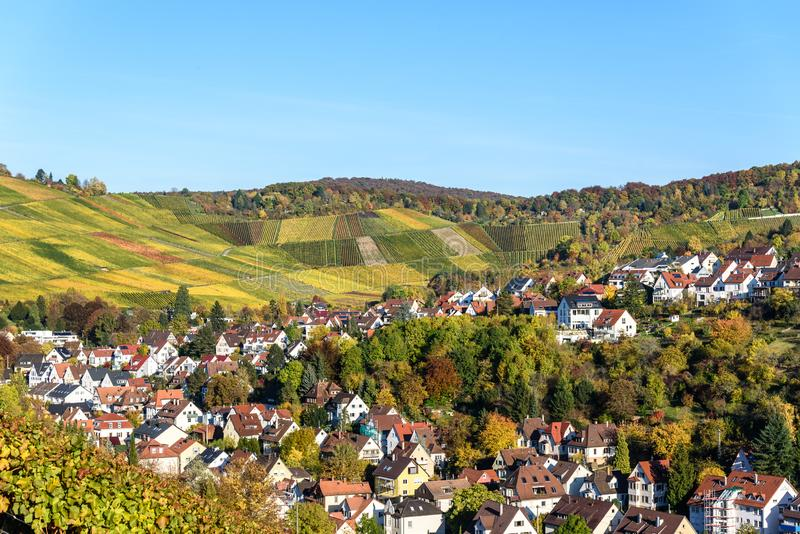 Виноградники на Штутгарте, Uhlbach на долине Неккара - красивом ландшафте в autum в Германии стоковое фото rf