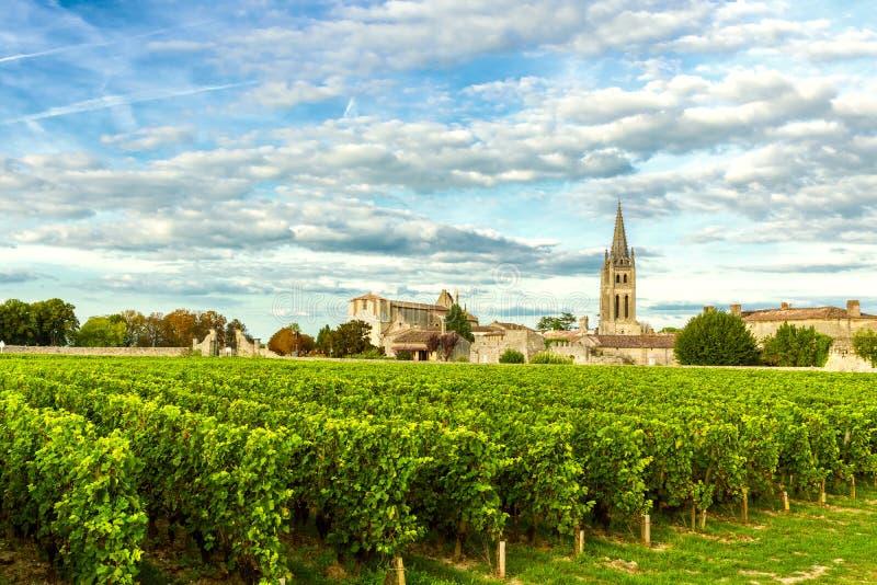 Виноградники Святого Emilion, Бордо Wineyards в Франции стоковое фото