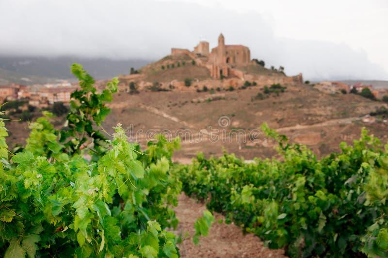виноградники Rioja, Испания sonsierra vicente de la san стоковая фотография