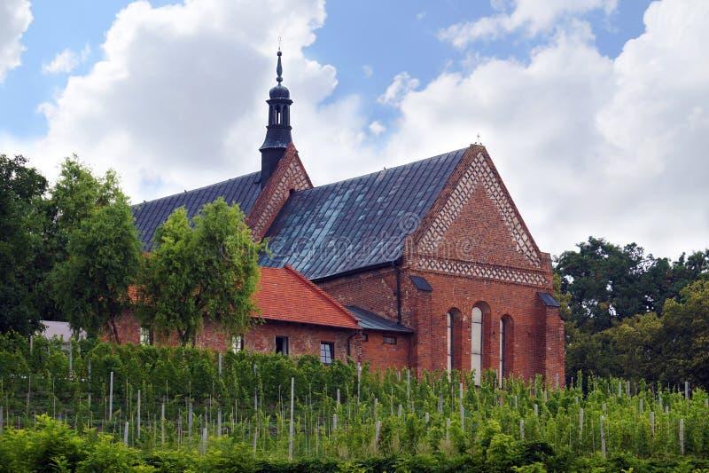 Виноградник окружая церковь предназначенную к St James Sandom стоковая фотография rf