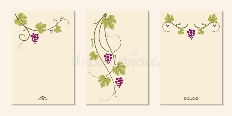 Виноградные лозы и декоративный комплект карточек стоковые фото