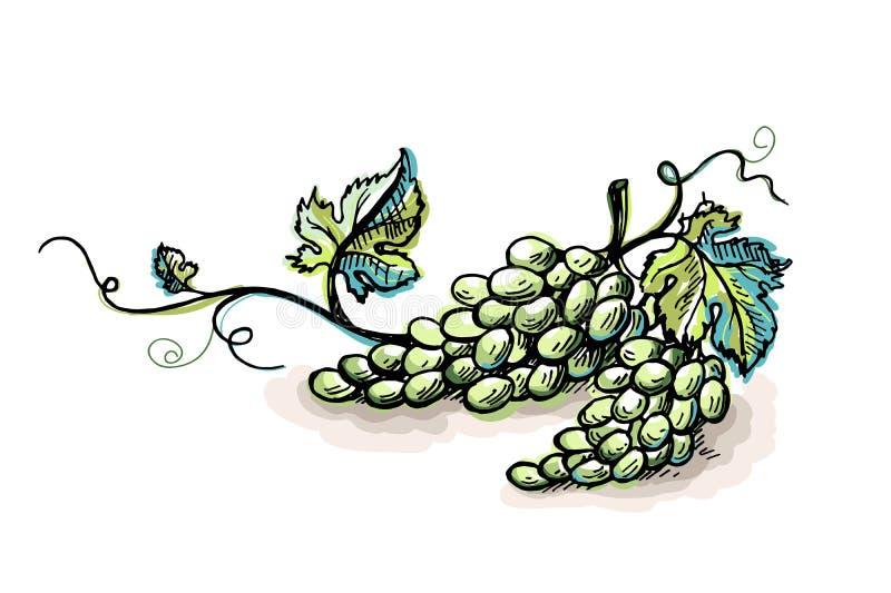 Виноградина акварели зрелая при листья изолированные на белизне иллюстрация вектора