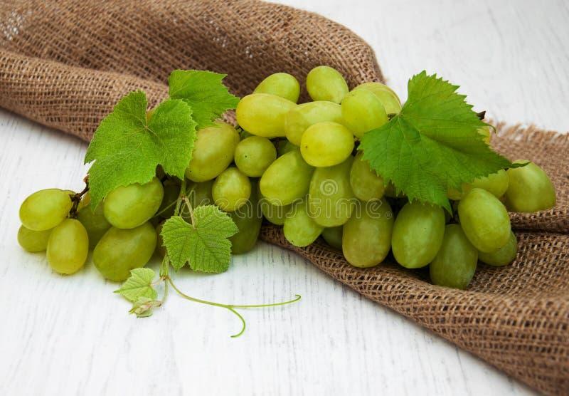 Виноградина с листьями стоковые изображения rf