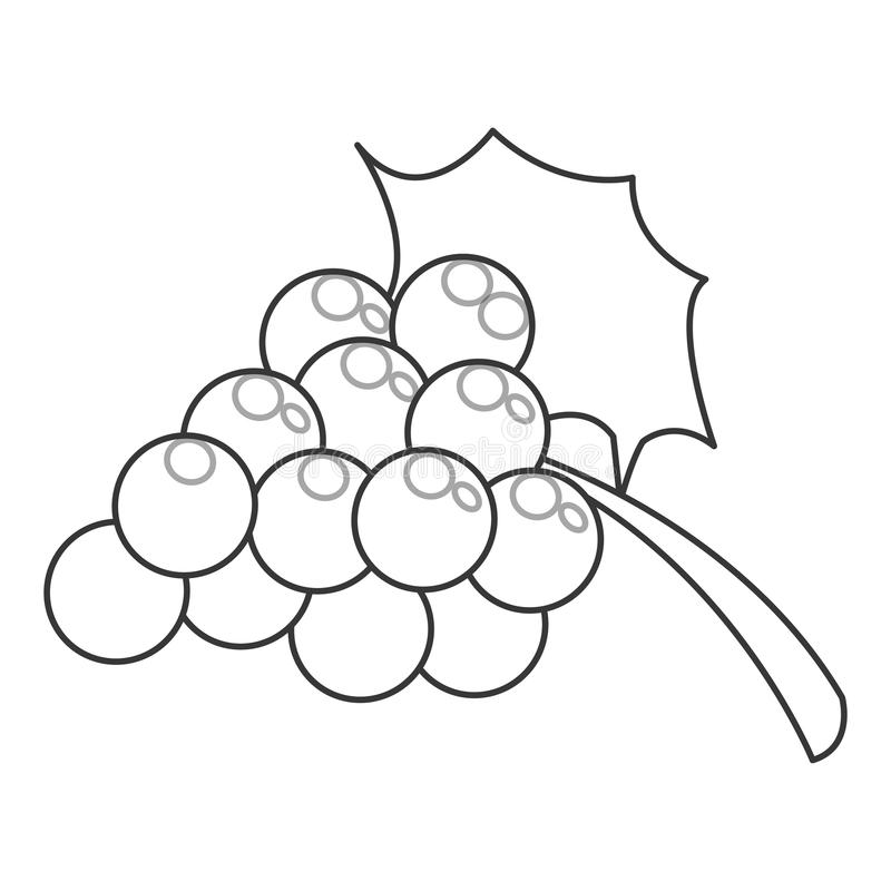 виноградины с значком лист иллюстрация штока