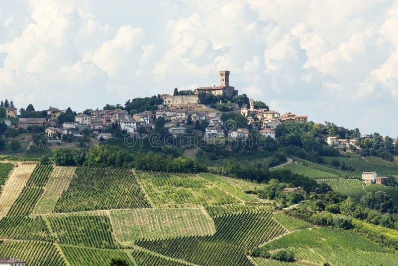 Виноградники в Oltrepo Pavese (Италия) стоковое фото rf