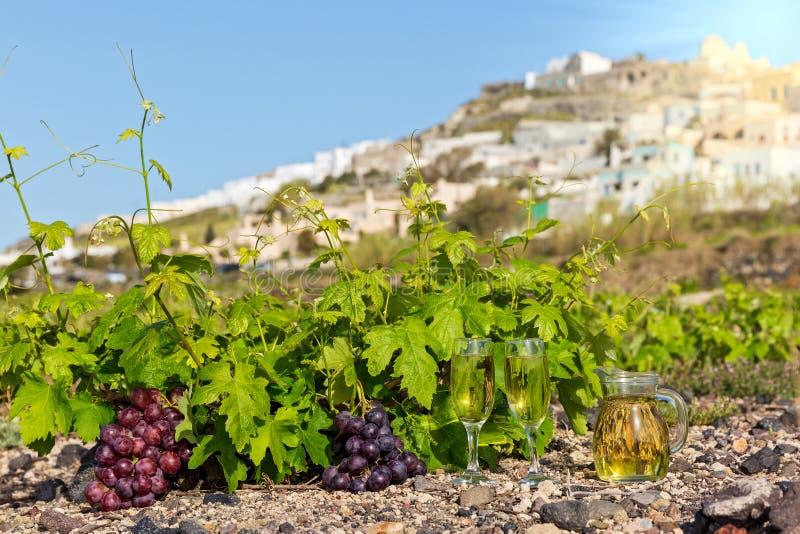 Виноградники и вино по бокалам стоковое изображение rf