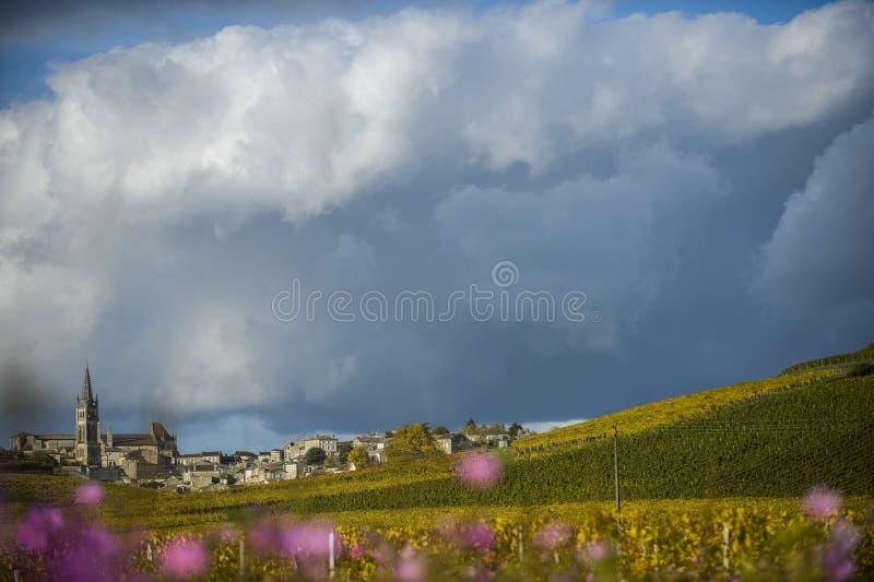 Виноградники Святого Emilion, Бордо, Франции стоковое изображение rf