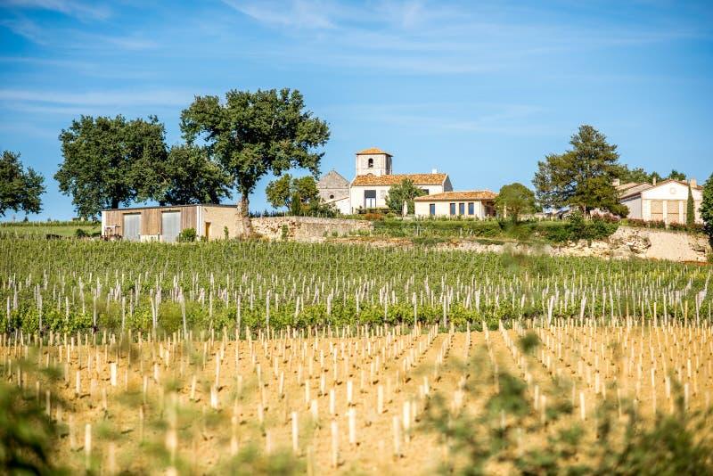 Виноградники Emilion Святого в Франции стоковые фотографии rf