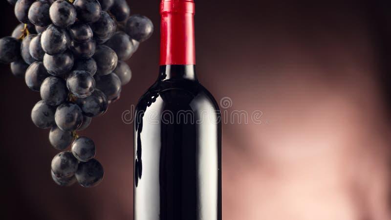 Вино Бутылка красного вина с зрелыми виноградинами стоковые фотографии rf
