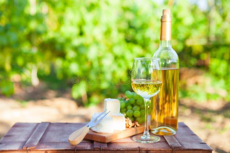 Вино, виноградины, гайки, сыр на винограднике Обедающий, обед, романтичный стоковые фото