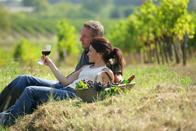 вино виноградника дегустации пар лежа стоковые фото