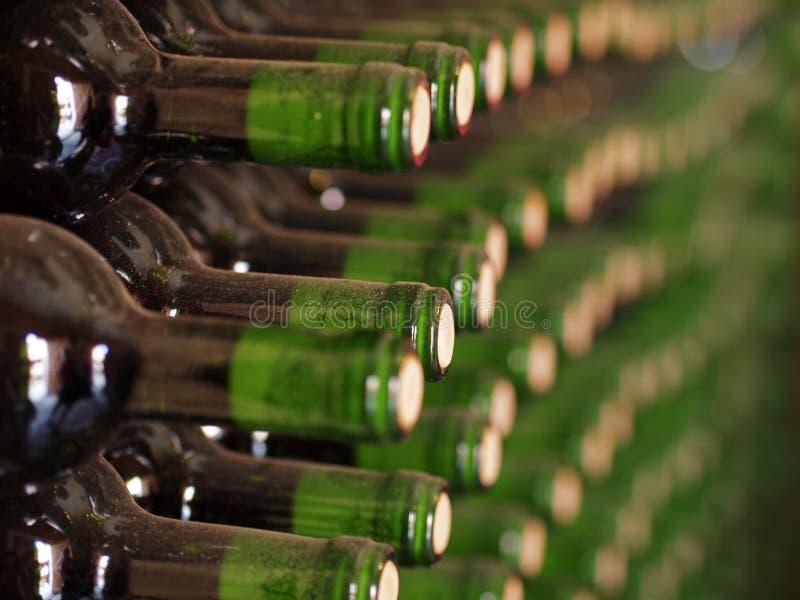 Винодельня стоковое фото