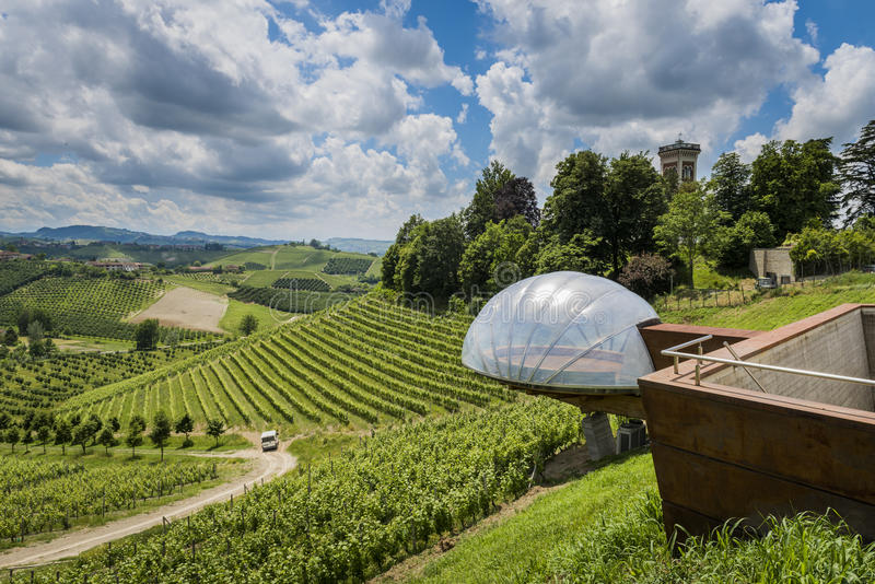 Винодельня Ceretto с точкой зрения, виноградниками и замком стоковые изображения
