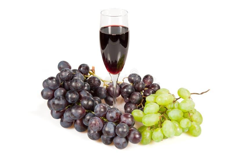 вино лозы стоковые фотографии rf
