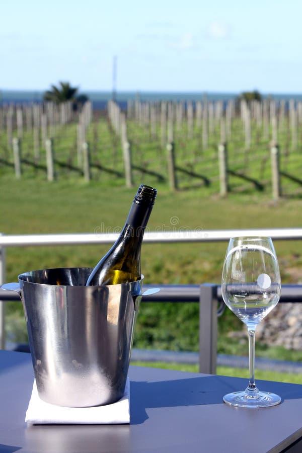 вино льда ведра стоковое изображение rf