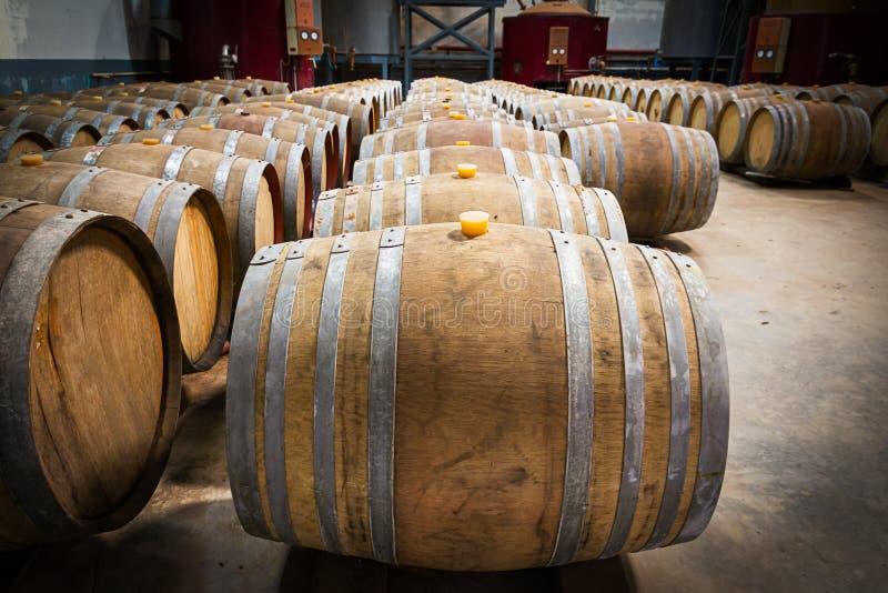 Вино несется погреб винодельни стоковое фото