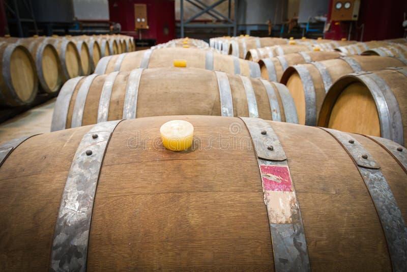 Вино несется погреб винодельни стоковое фото rf