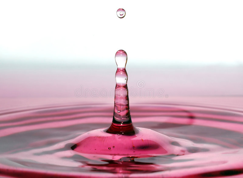 вино падения стоковое фото