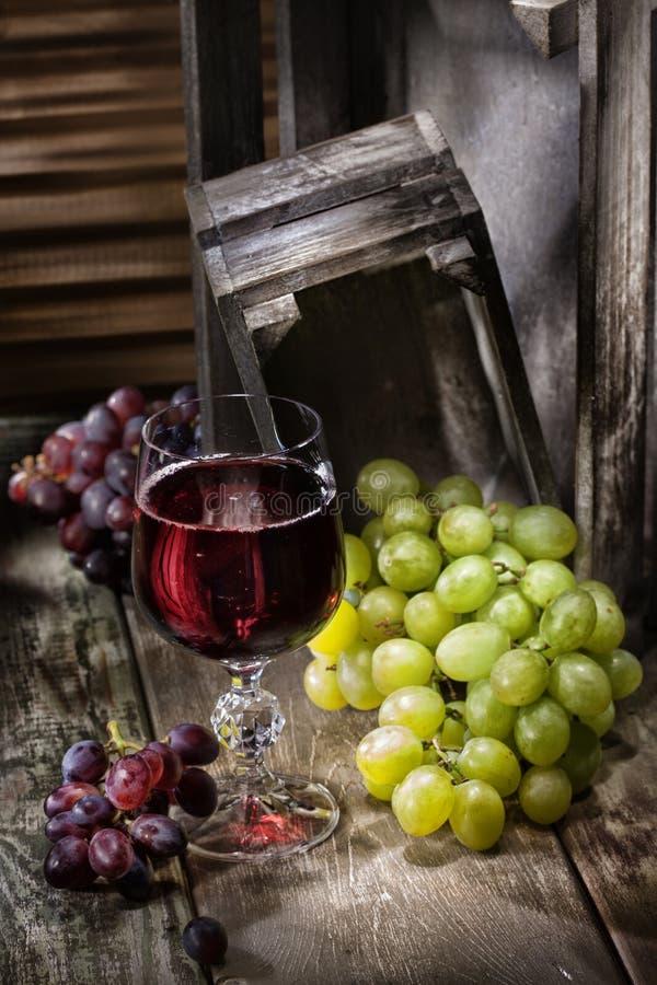 вино руки виноградины покрашенное иллюстрацией стоковое изображение rf