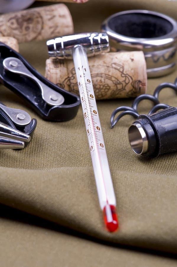 вино термометра стоковое изображение rf
