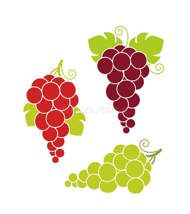 вино хлебоуборки виноградин вкусное Изолированные виноградины на белой предпосылке бесплатная иллюстрация