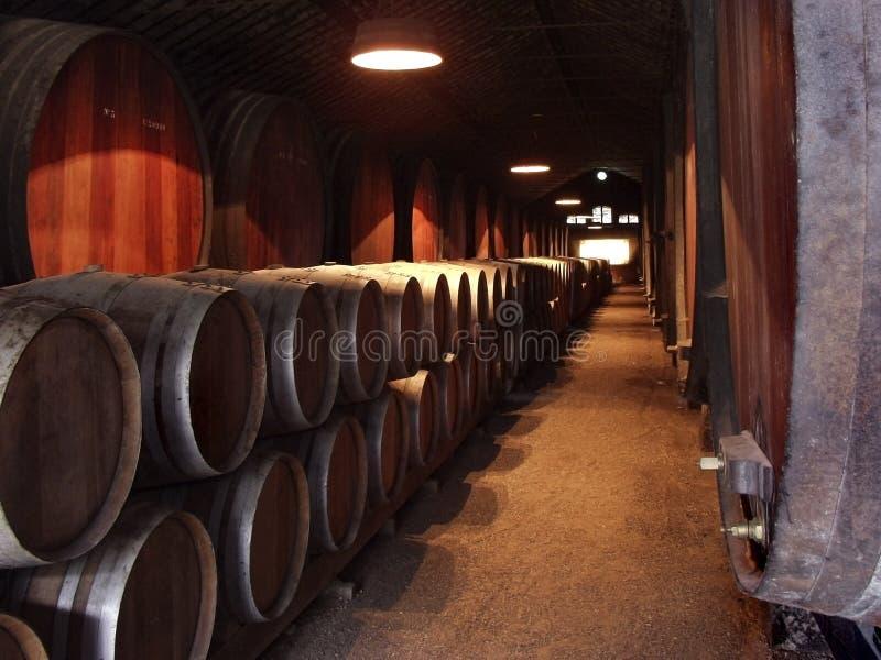 вино celler стоковые фотографии rf