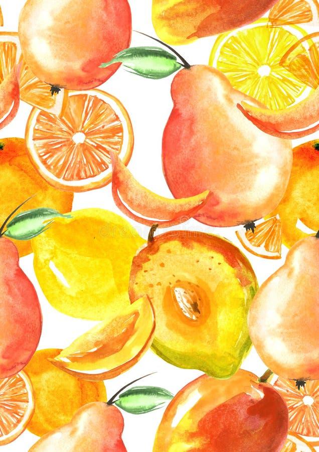 Винтажная безшовная картина с акварелями - от тропического плода, брызг цитруса, лимона, апельсина, известки, груши, плода манго иллюстрация вектора