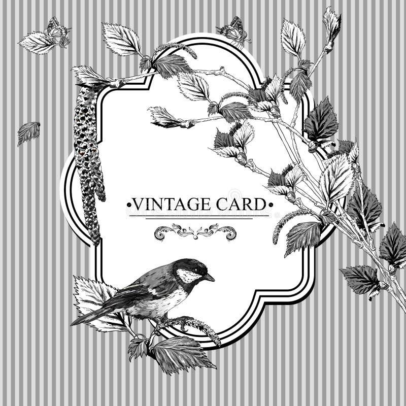 Download Винтажная карточка с хворостинами березы и синицей птицы Иллюстрация вектора - иллюстрации насчитывающей весна, green: 40584990