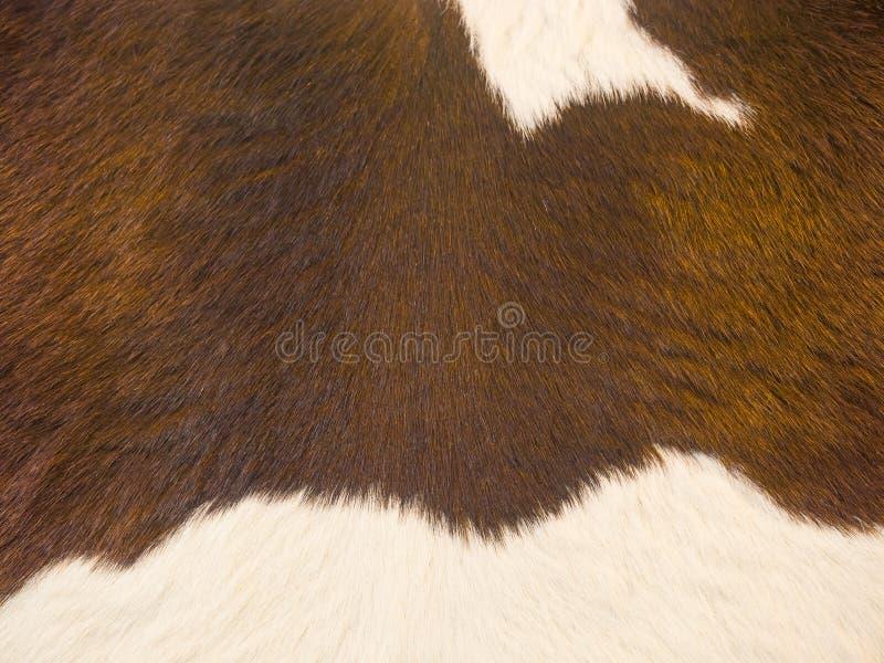 Винтажная кожаная кожа стоковая фотография rf