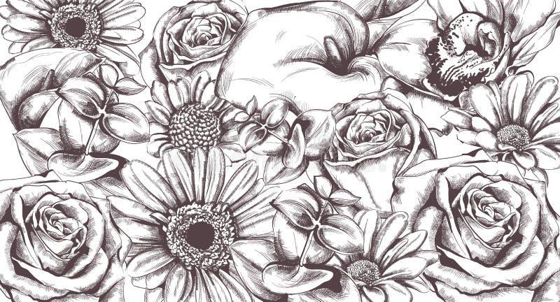 Винтажная линия искусство вектора картины цветков Розы и солнцецвет детализировали текстуры иллюстрация штока