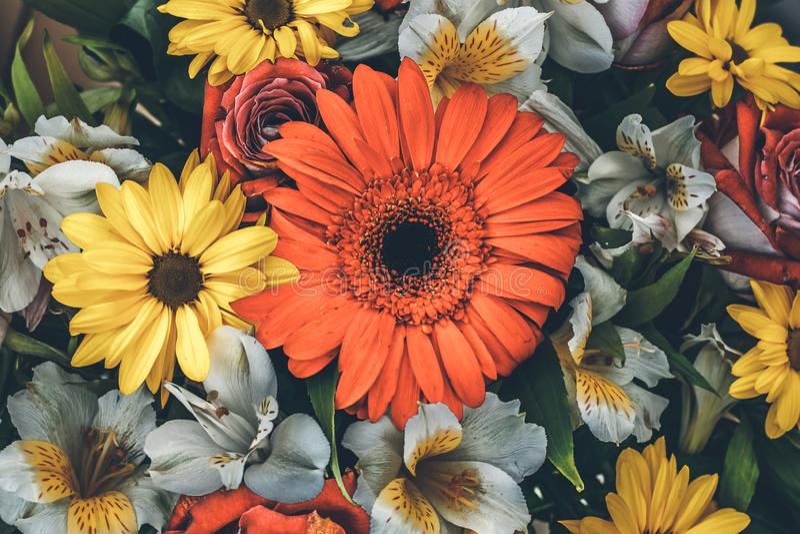 Винтажная поздравительная открытка с красочными цветками Предпосылка цветка в ретро стиле Букет цветков, флористическое украшение стоковое фото