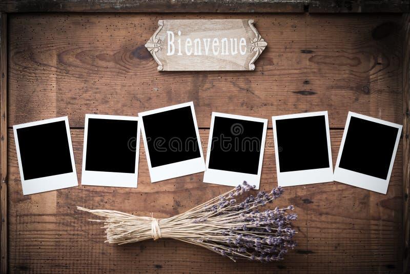 Винтажная поляроидная рамка фото на древесине с лавандой и знаком стоковые фото