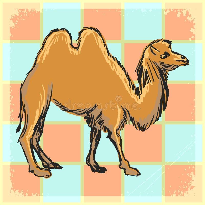 Винтажная предпосылка с верблюдом иллюстрация вектора