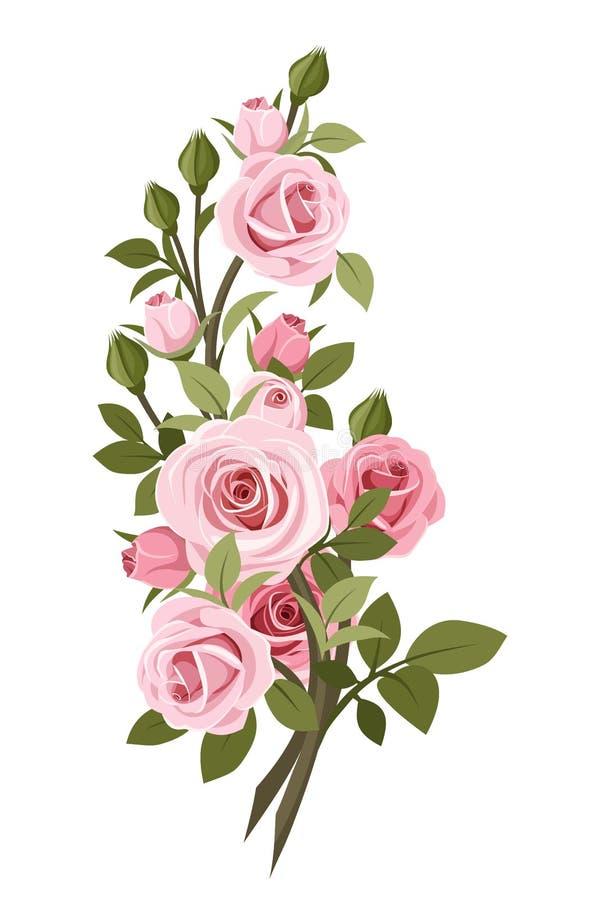 Винтажная розовая ветвь роз. бесплатная иллюстрация