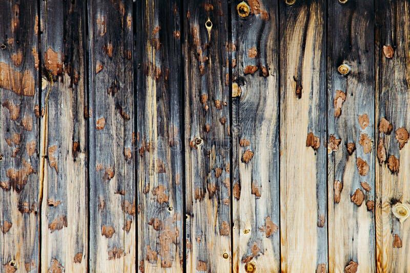 Винтажная темная деревянная предпосылка Бежевая и синяя старая доска Деревянная предпосылка стоковая фотография