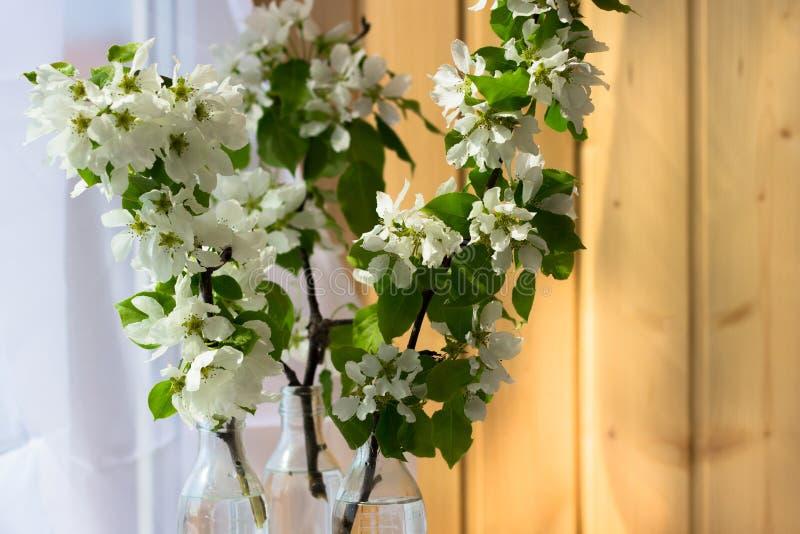 Винтажное стекло, мини стеклянная бутылка с цвести ветвями вишни стоковые фото