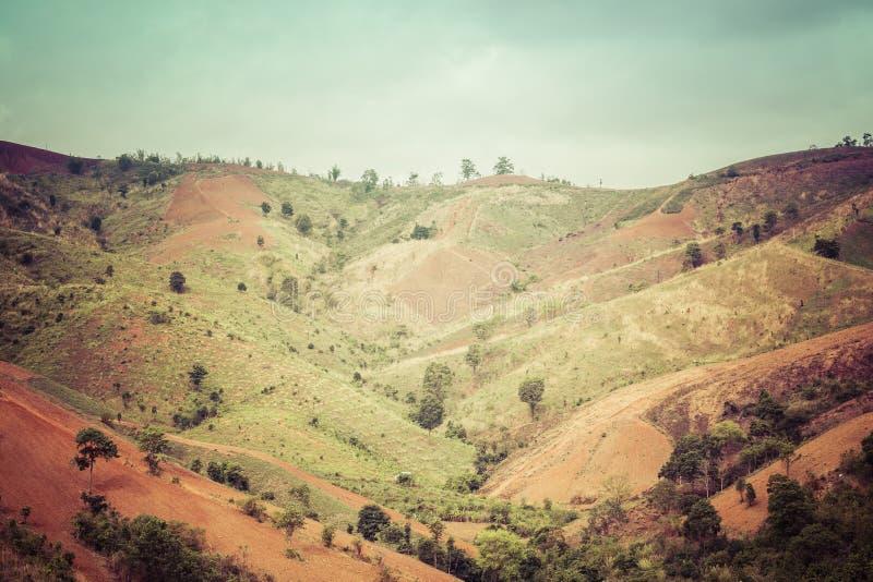 Винтажное Mountai стоковое фото rf