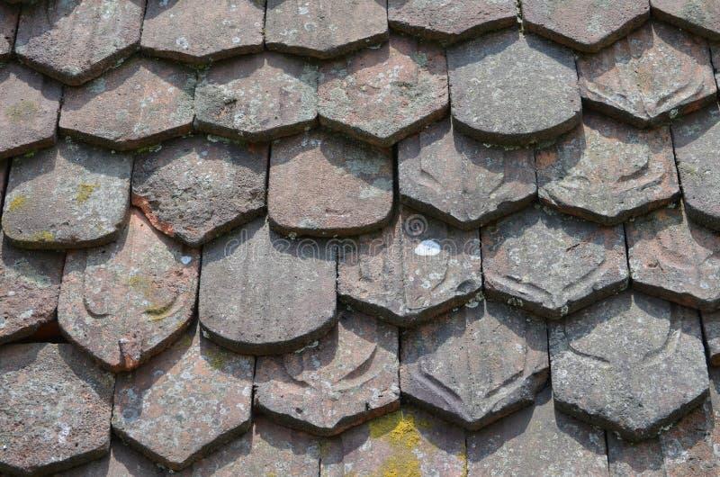 Винтажные гонт глины с лишайниками стоковое фото