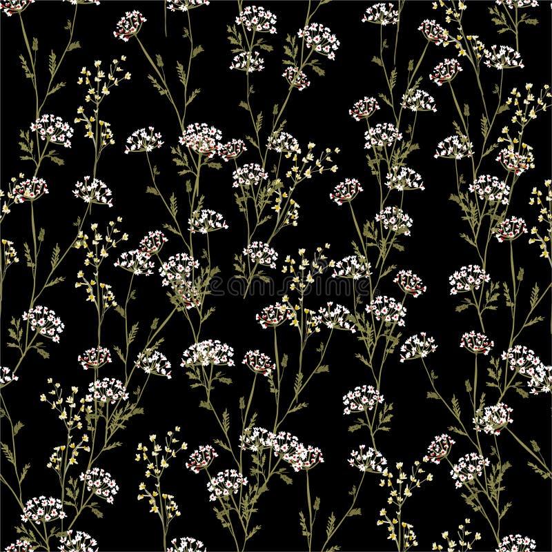 Винтажные красивые и ультрамодные безшовные цветки луга картины, изолированные на цвете лета черном Ботаническое флористическое у иллюстрация вектора
