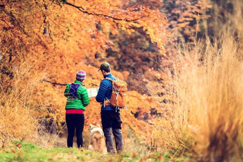 Винтажные пары instagram в лесе осени стоковая фотография rf