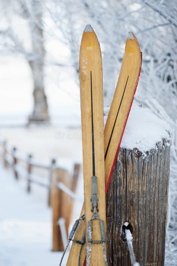 Винтажные подсказки лыжи зимы стоковые изображения