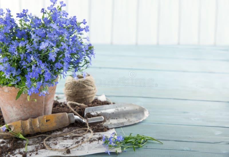 Винтажные садовые инструменты стоковая фотография