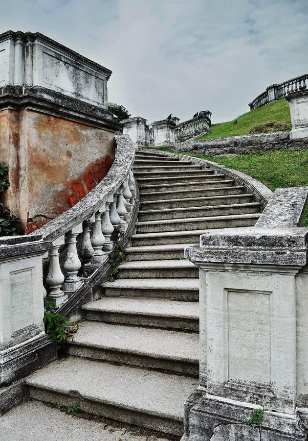 Винтажные серые каменные шаги, серая старая кирпичная стена, зеленая трава стоковая фотография