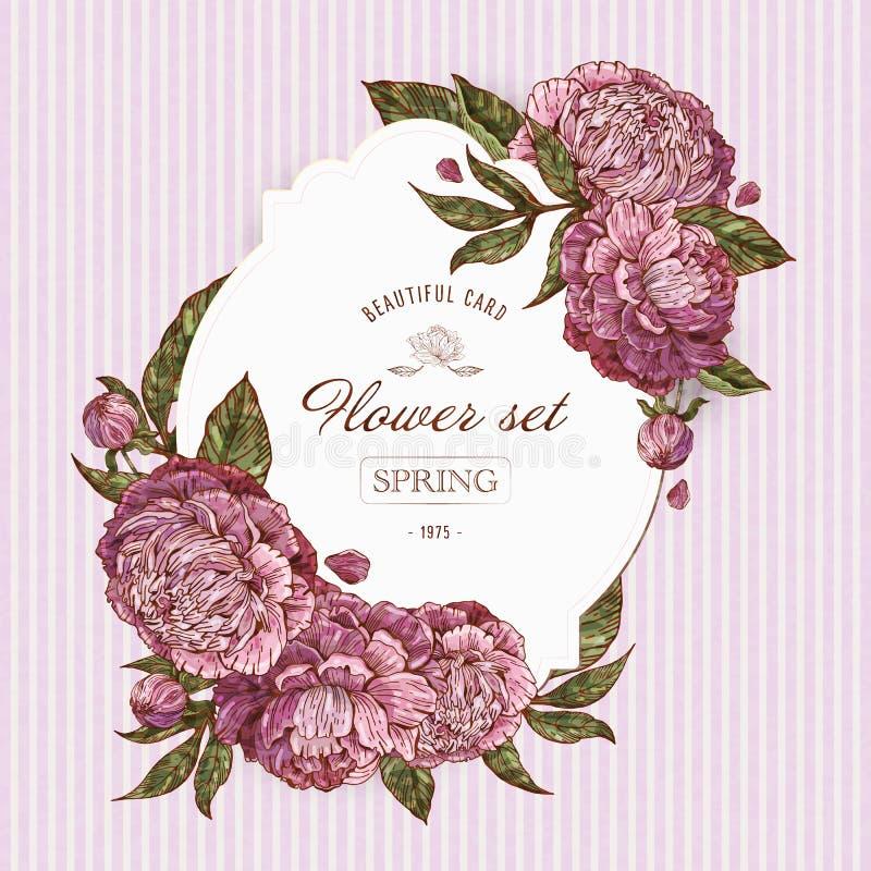 Винтажные цветочные карты с лиловыми и розовыми пионерами. РомантичесРиллюстрация вектора