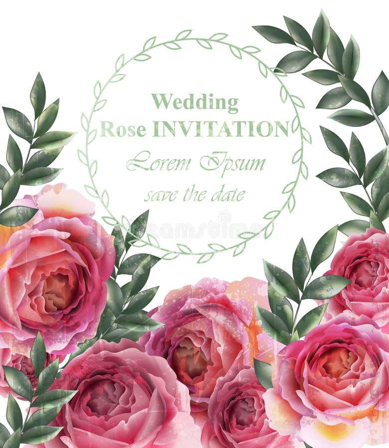 Винтажный вектор предпосылки роз Оформления флористической карточки ретро иллюстрация вектора