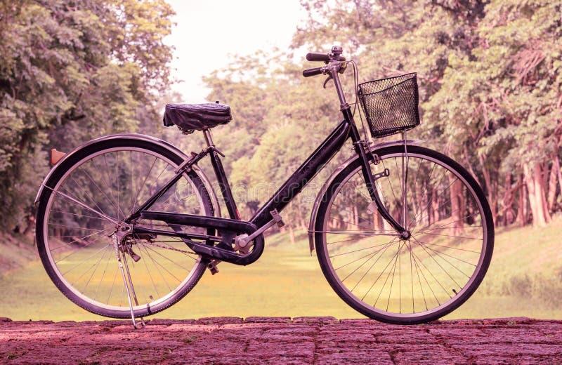 Винтажный велосипед припаркованный на дороге стоковые изображения
