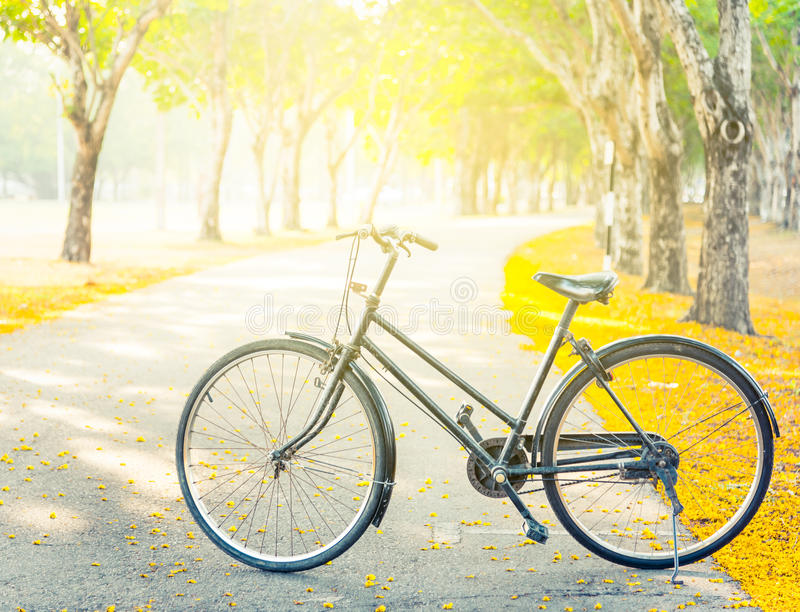 Винтажный велосипед на дороге стоковая фотография