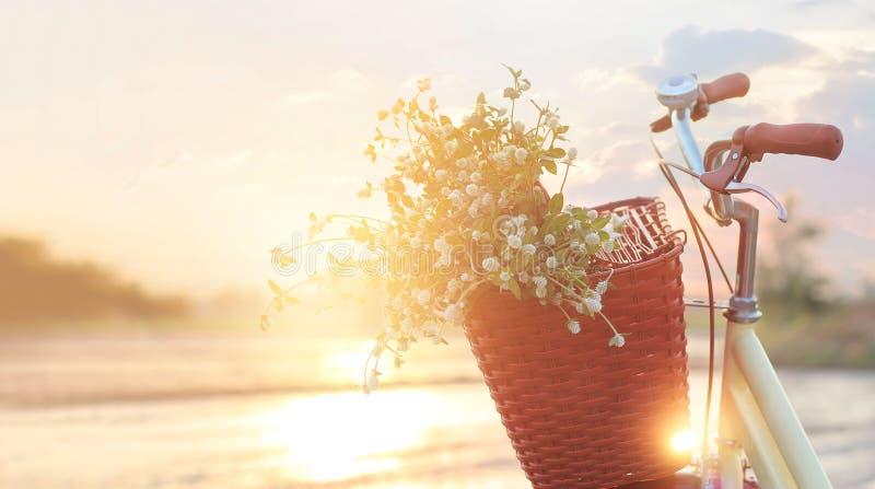 Винтажный велосипед с цветками в корзине на заходе солнца лета стоковое изображение rf