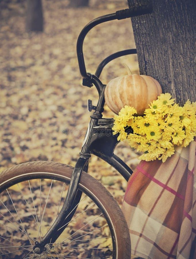 Винтажный велосипед стоковые фотографии rf